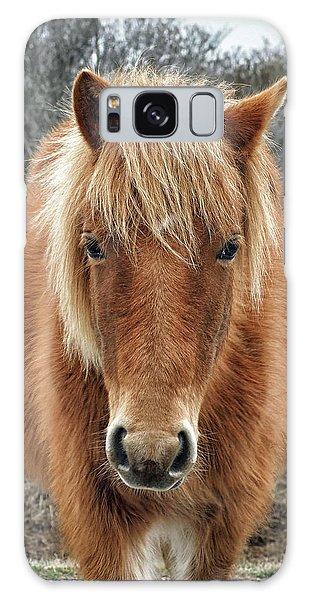 Assateague Island Horse Miekes Noelani Galaxy Case