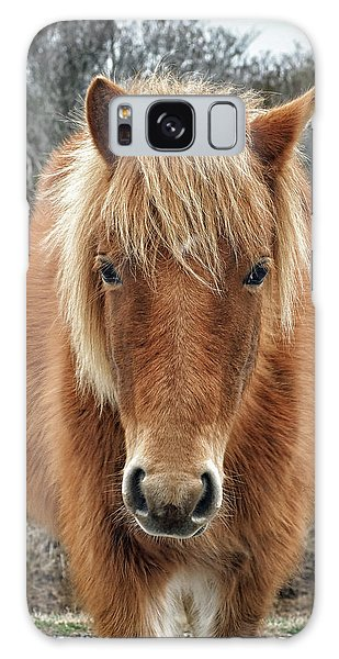 Assateague Island Horse Miekes Noelani Galaxy Case
