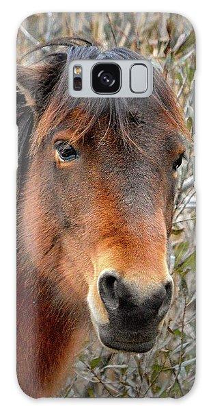 Assateague Island Pony Patricia Irene Galaxy Case