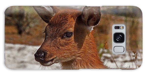 Assateague Island Sika Deer Fawn Galaxy Case