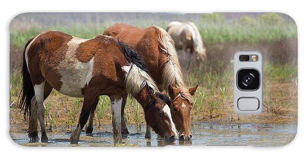 Assateague Ponies Tale Drink Galaxy Case