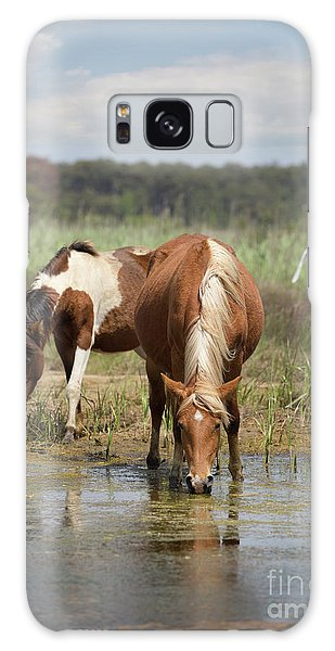 Assateague Pony Pair Galaxy Case