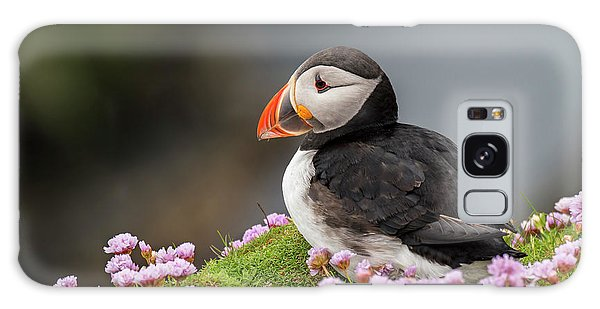 Atlantic Puffin Galaxy Case