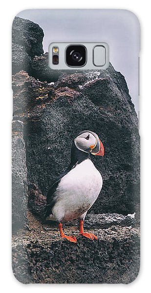 Atlantic Puffin Galaxy S8 Case