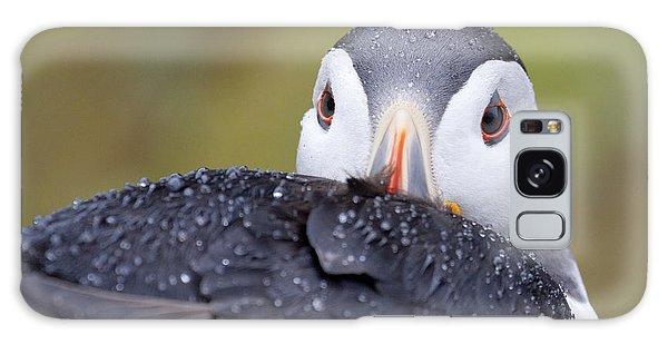 Atlantic Puffin With Rain Drops Galaxy Case