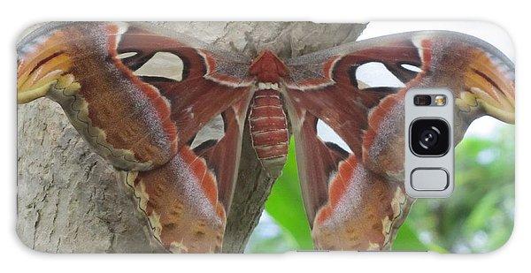Atlas Butterfly Galaxy Case
