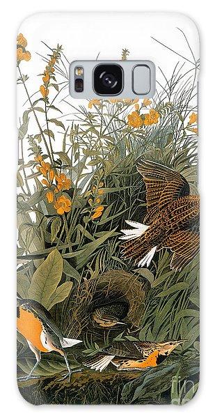 Audubon: Meadowlark Galaxy Case