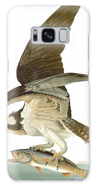 Osprey Galaxy Case - Audubon: Osprey by Granger