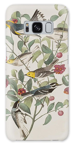 Audubons Warbler Hermit Warbler Black-throated Gray Warbler Galaxy Case by John James Audubon