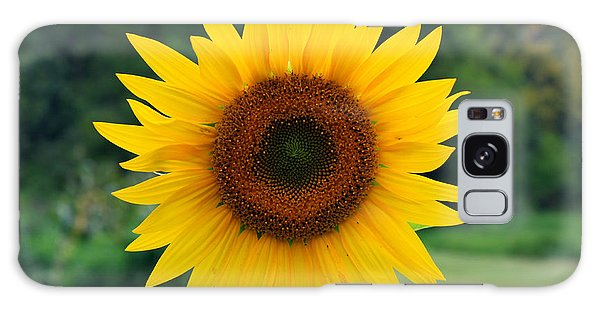 August Sunflower Galaxy Case