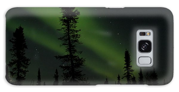 Aurora Borealis The Northern Lights Interior Alaska Galaxy Case by Sharon Mau