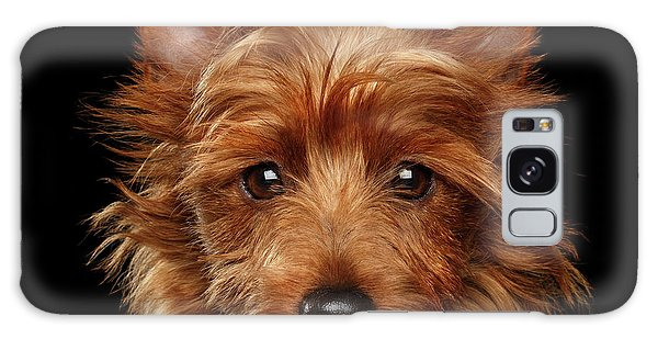 Australian Terrier Galaxy Case