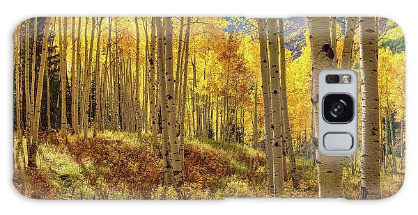 Autumn Aspen Forest Aspen Colorado Panorama Galaxy Case