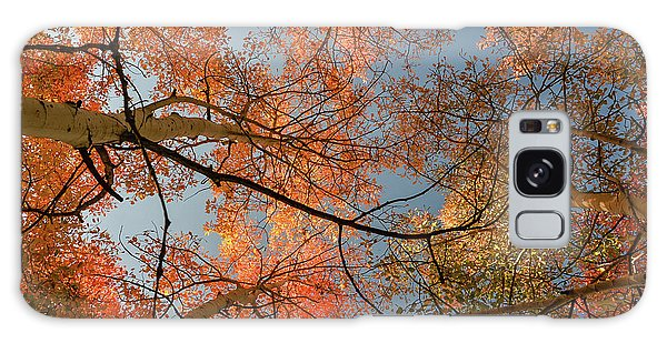 Autumn Aspens In The Sky Galaxy Case