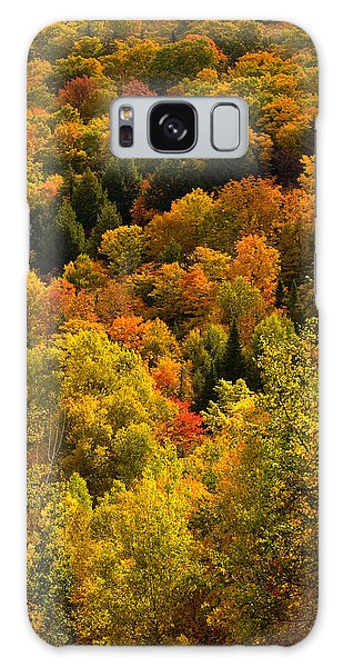Autumn At Acadia Galaxy Case by Brent L Ander