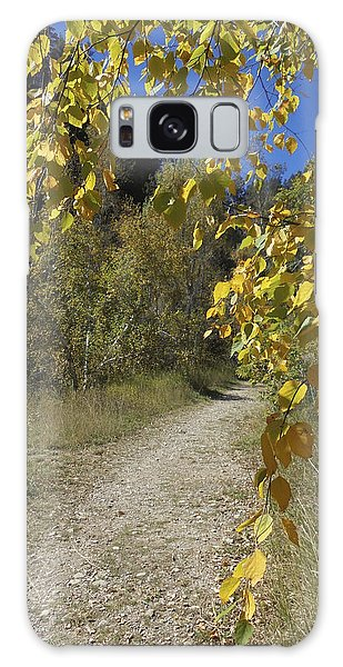 Autumn At Iron Creek Galaxy Case