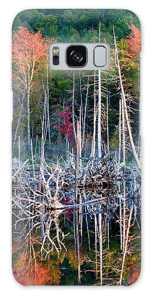 Autumn At Moosehead Bog Galaxy Case by Brent L Ander