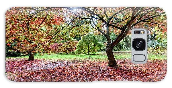 Autumn At Westonbirt Arboretum Galaxy Case
