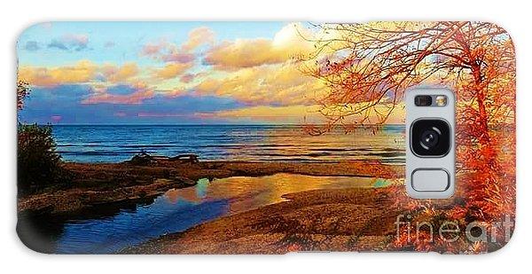 Autumn Beauty Lake Ontario Ny Galaxy Case
