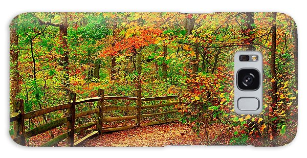 Autumn Bend - Allaire State Park Galaxy Case