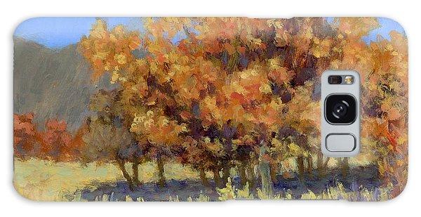 Autumn Blaze Galaxy Case