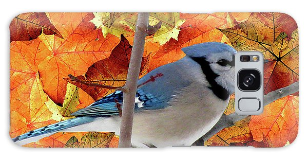 Autumn Blue Jay Galaxy Case