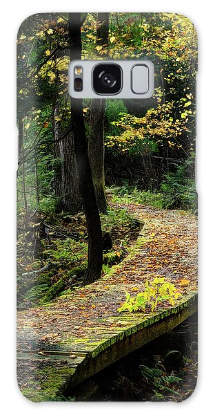 Autumn Boardwalk Galaxy Case