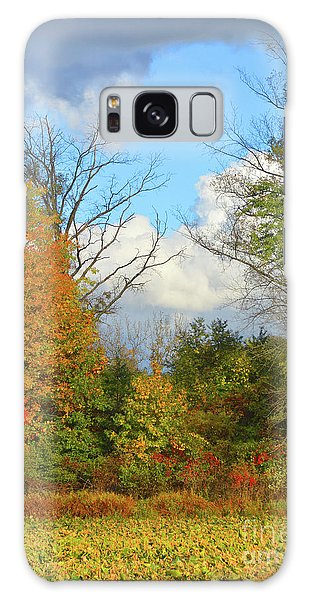Autumn Breeze Nature Art Galaxy Case by Robyn King