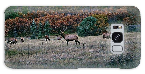 Autumn Bull Elk Galaxy Case