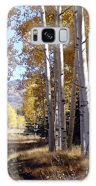 Autumn Chama New Mexico Galaxy Case