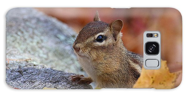 Autumn Chipmunk Galaxy Case