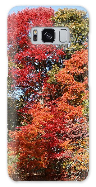 Autumn Color Spray Galaxy Case