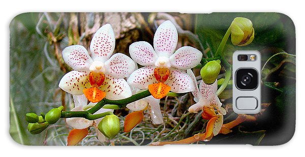 Autumn Colored Orchids Galaxy Case