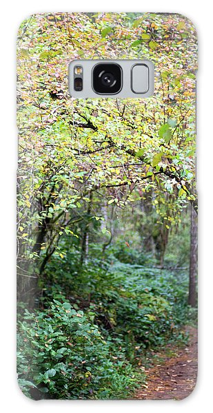 Autumn Colors In The Forest Galaxy Case