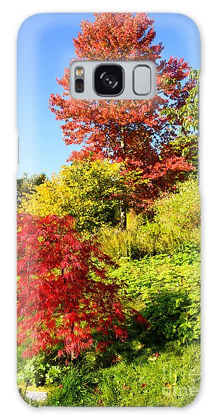 Autumn Colours Galaxy Case by Colin Rayner