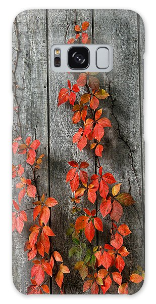 Autumn Creepers Galaxy Case