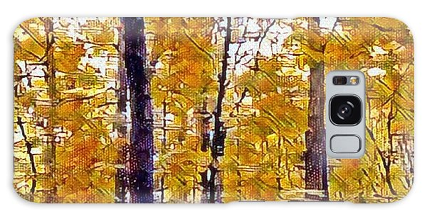 Autumn  Day In The Woods Galaxy Case
