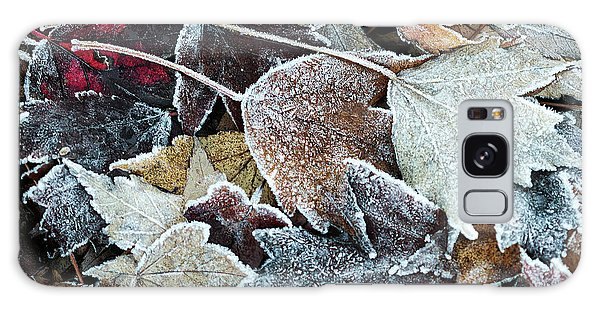 Galaxy Case featuring the photograph Autumn Ends, Winter Begins 1 by Linda Lees