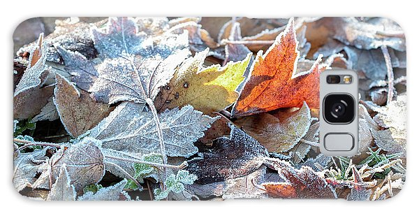 Galaxy Case featuring the photograph Autumn Ends, Winter Begins 3 by Linda Lees