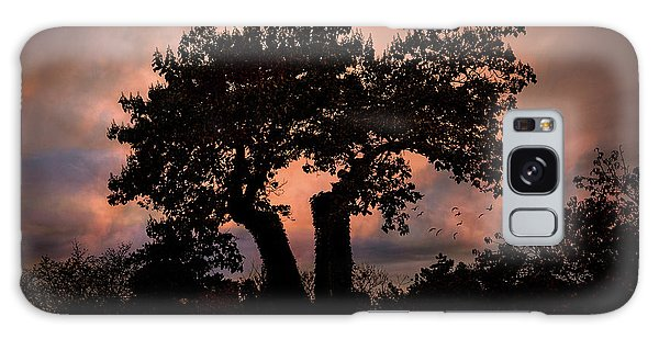 Galaxy Case featuring the photograph Autumn Evening Sunset Silhouette by Chris Lord