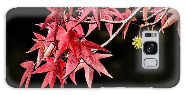 Galaxy Case featuring the photograph Autumn Fire by AJ Schibig