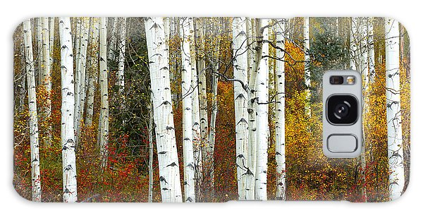 Autumn Forest Beauty Galaxy Case