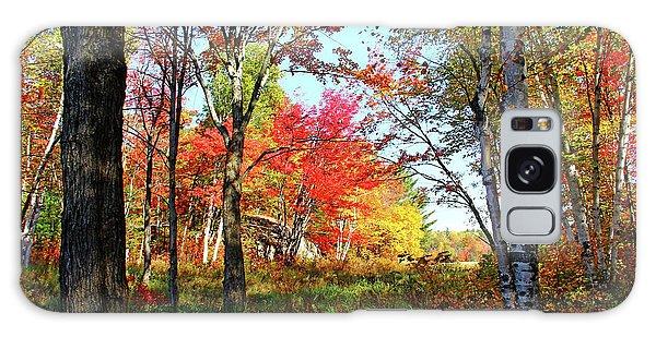 Autumn Forest Galaxy Case by Debbie Oppermann