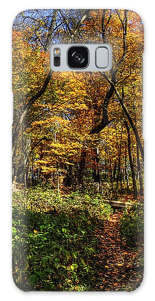 Autumn Forest Path At Johnson's Mound Galaxy Case