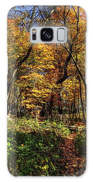 Autumn Forest Path At Johnson's Mound Galaxy Case