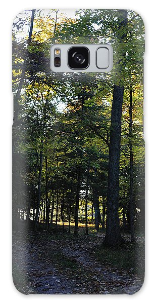 Autumn Glen Galaxy Case