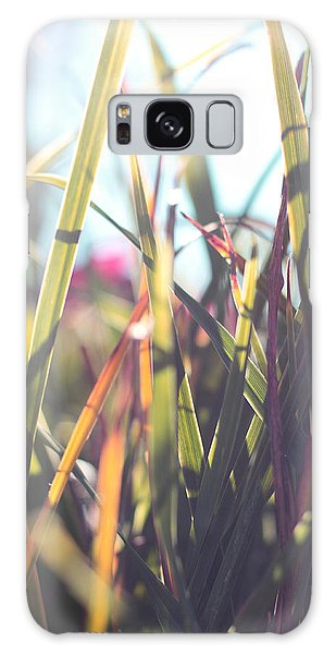 Autumn Grasses Galaxy Case