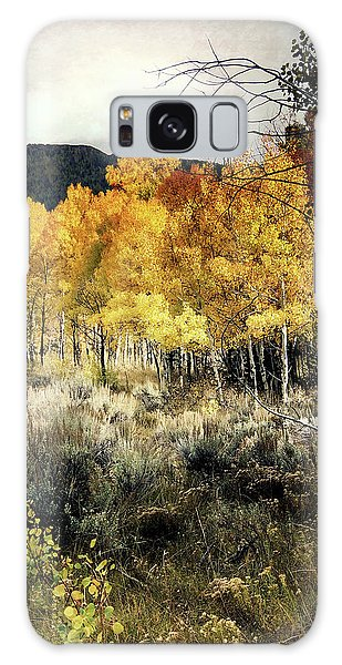 Autumn Hike Galaxy Case by Jim Hill