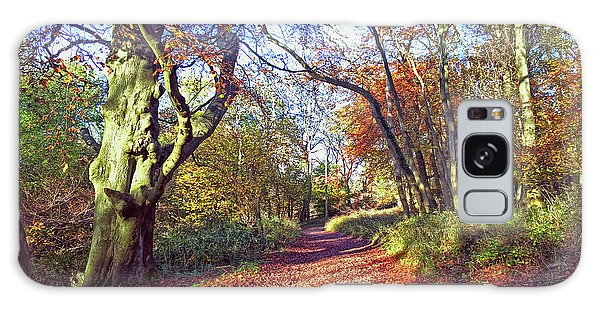 Autumn In Ashridge Galaxy Case