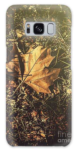 Galaxy Case featuring the photograph Autumn In Narrandera by Jorgo Photography - Wall Art Gallery